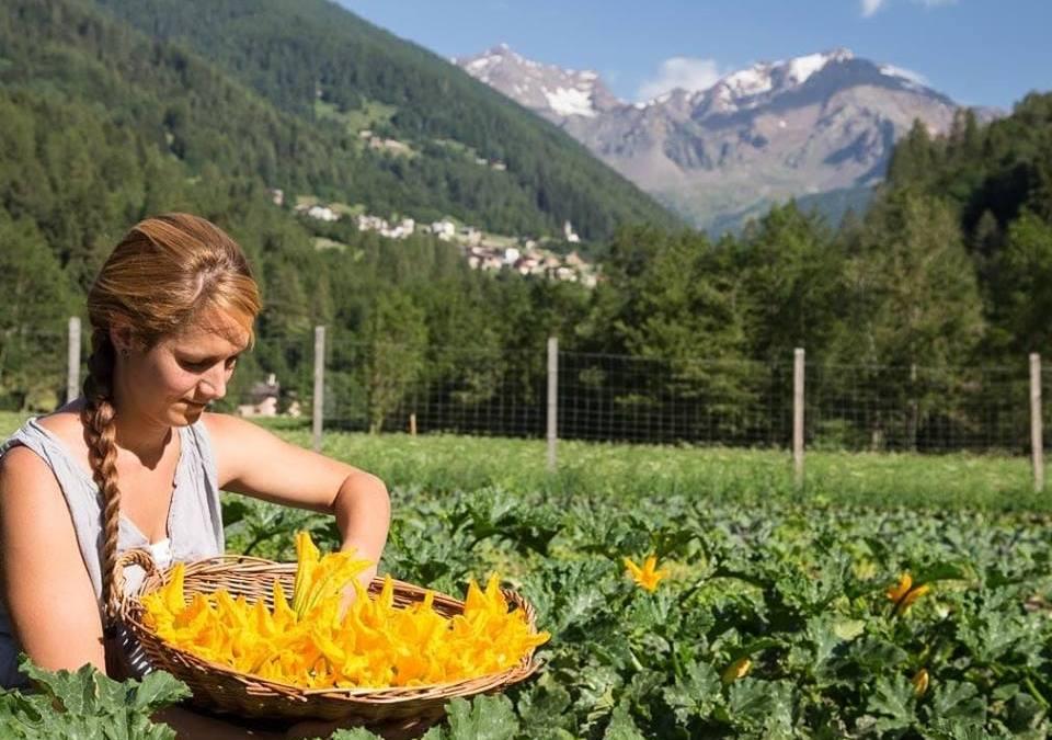Il primo supermercato plastic free d'Italia apre in Val di Sole