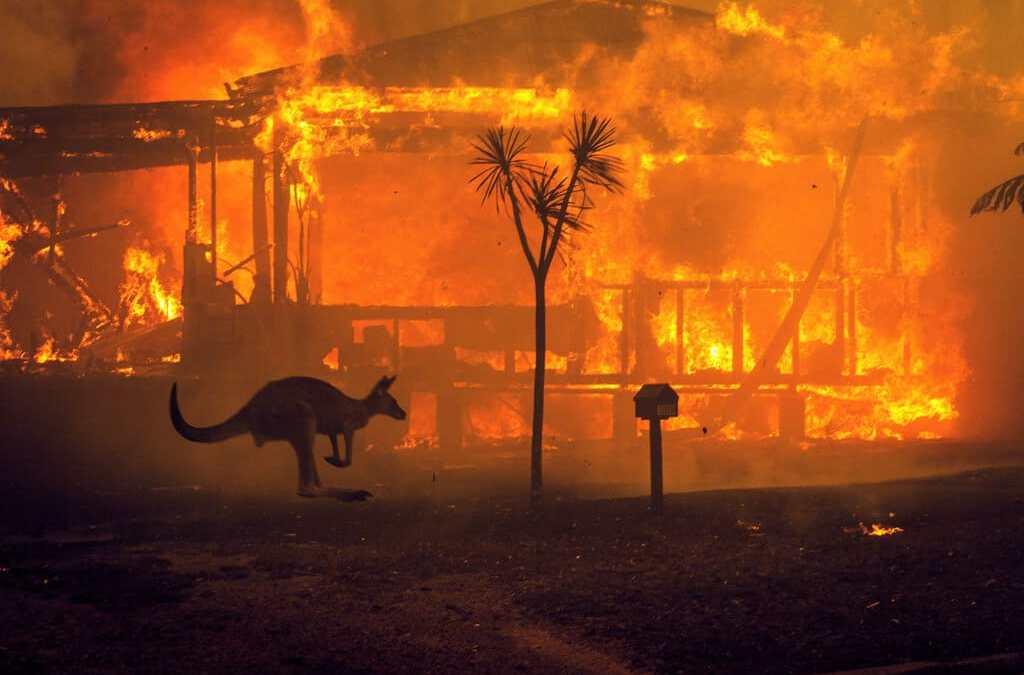 L'Australia brucia ma il mondo pensa ad altro