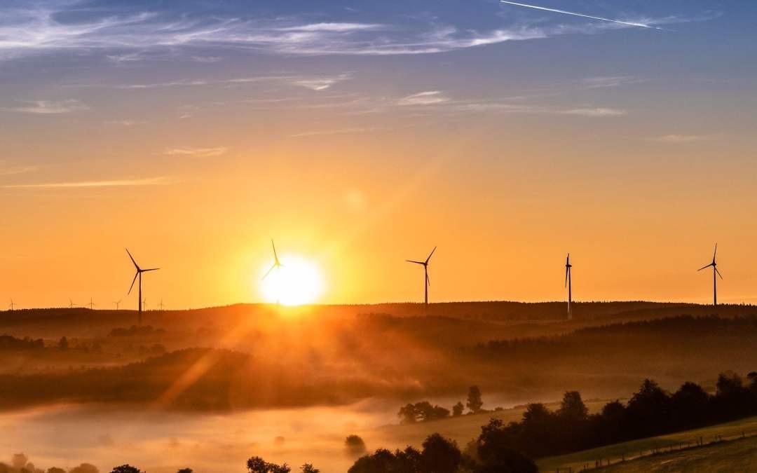 Come abbattere il 25% delle tue emissioni di CO2