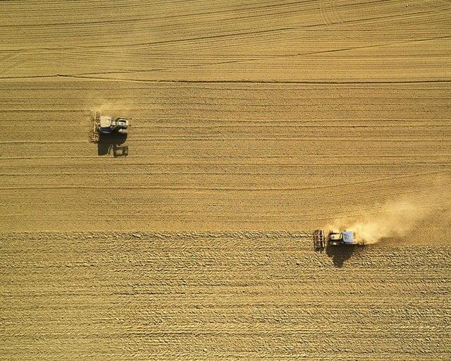 L'Italia è il secondo esportatore di pesticidi illegali in UE