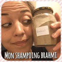 MON-1IER-SHAMPOING-A-LA-POUDRE-DE-BRAHMI3