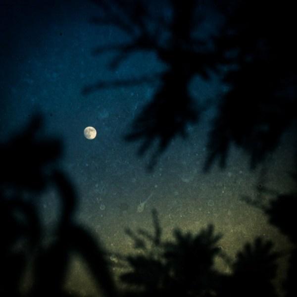 LR lune1 785x785 1 - Poussière de lune
