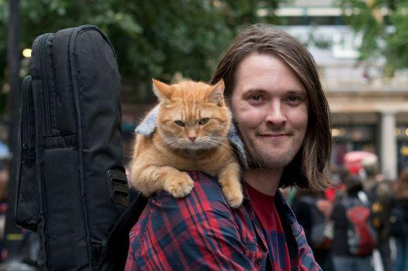 James Bowen Street Cat Bob 1024x682 - Le monde selon Bob