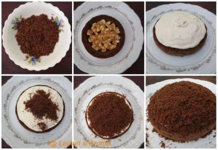 tort musuroi 1