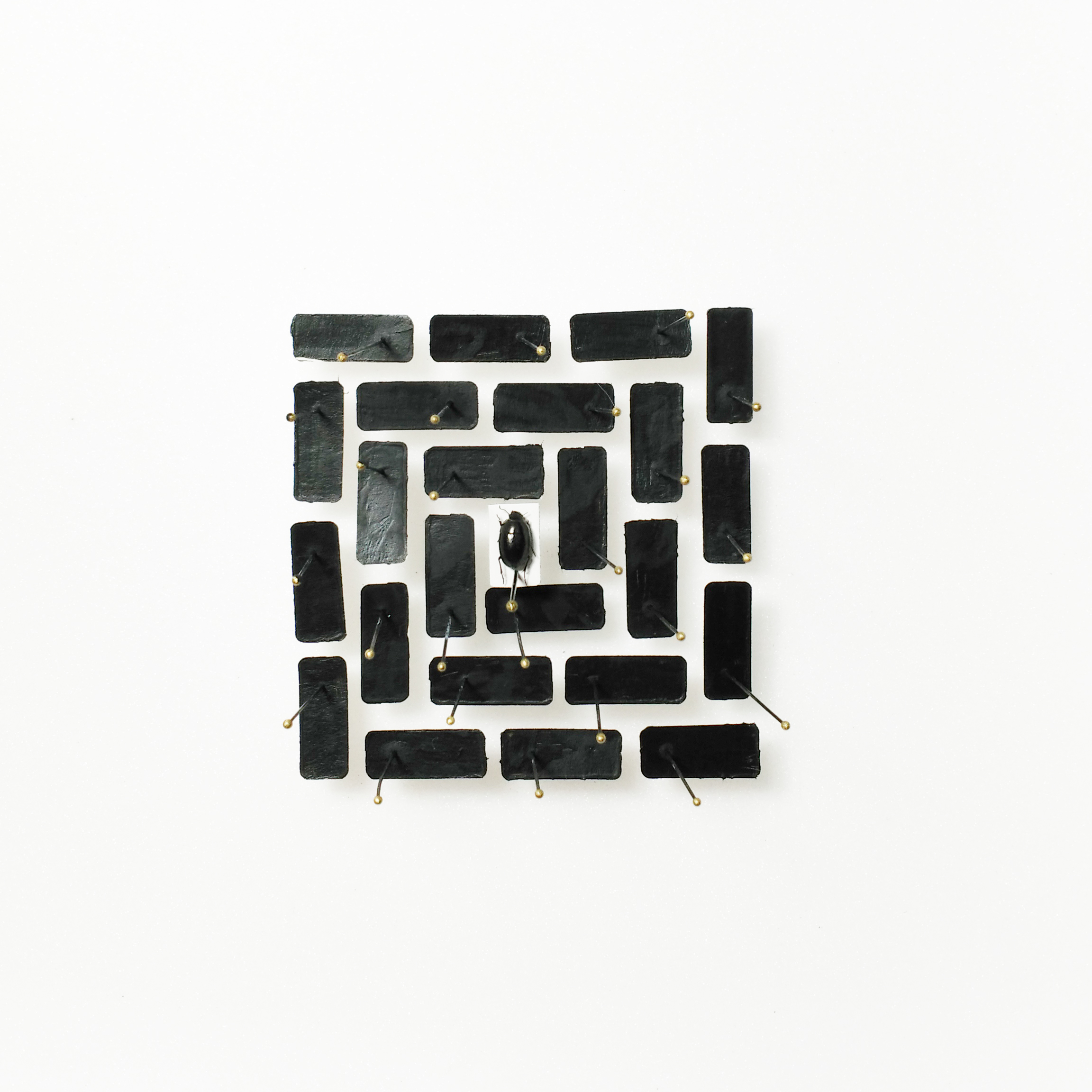 Immateriale Class Labyrinth (Collection of a Magpie Series) 2017 Mixed Media