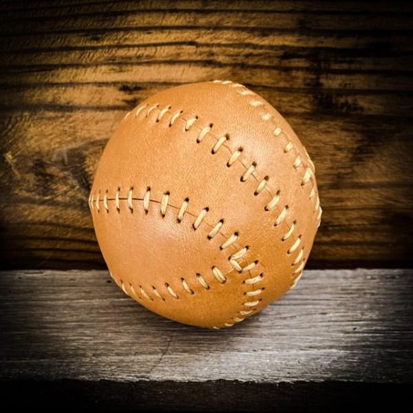 Lederball Spielball