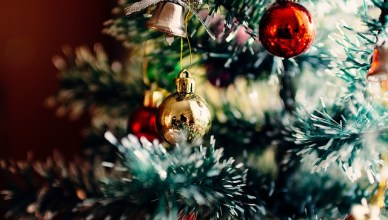 Sapin de Noël - les préparatifs de Noël
