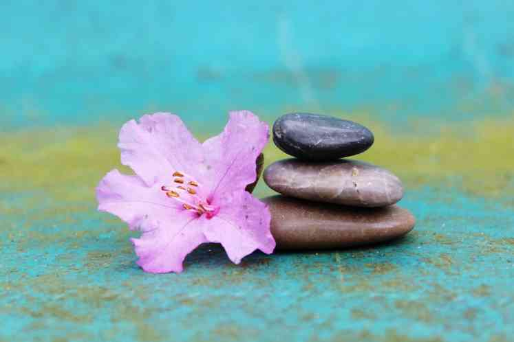 Fleur méditation développement personnel
