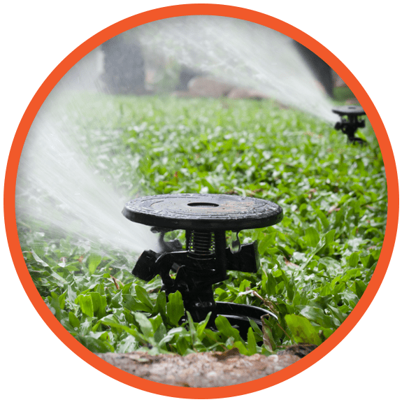 sprinkler repair in Dallas