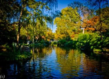 Japanese_Garden_Bridge