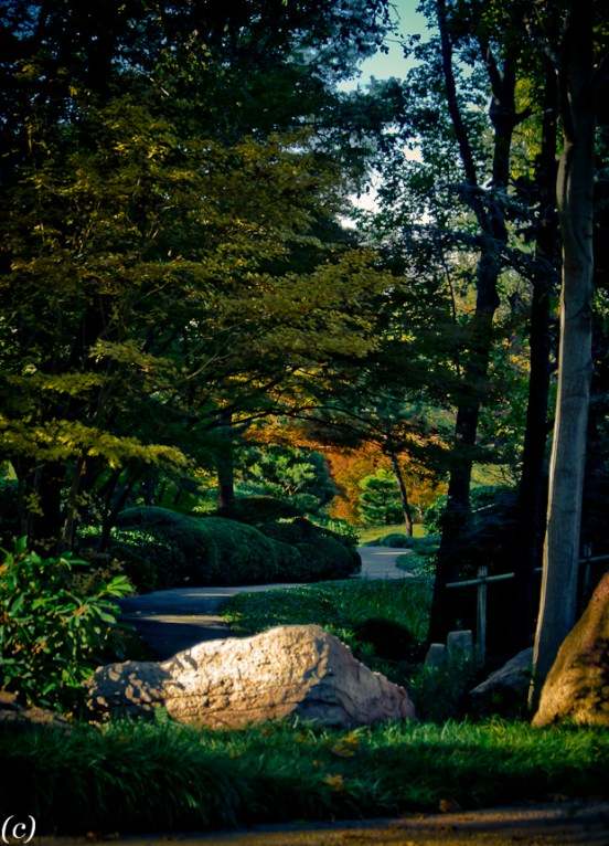 Rocks_Japanese_Garden