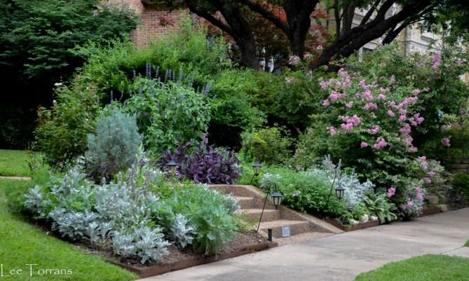 The Dallas Garden Embraces Native Plants Lee Ann Torrans Gardening