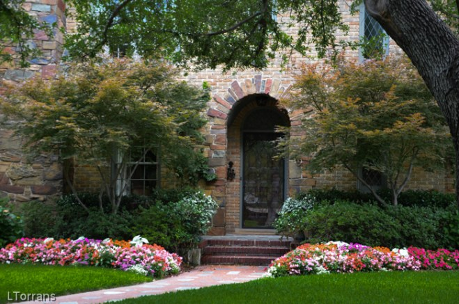 Flowering trees in texas an overview lee ann torrans for Garden design landscaping dallas tx