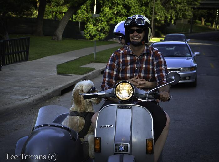 Vespa Dog Sidecar