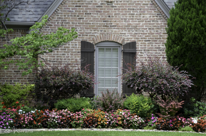 Dallas_Best_Landscaping_Design_Lee_Ann_Torrans_Dallas_Gardening-4