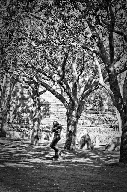 Nasher Sculpture Center Garden: Eve / Rodin