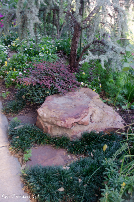 Pocket Garden with Nandina