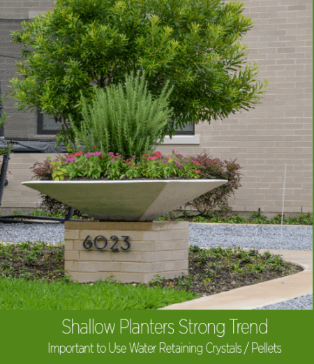 Top Ten Flower Pot Ideas Lee Ann Torrans