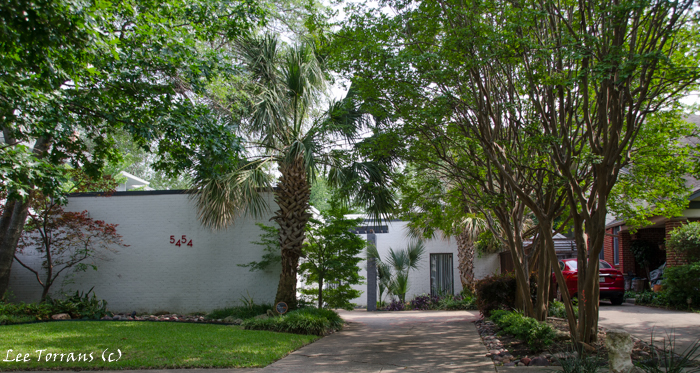 Vickery Park a few modern homes