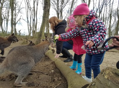 Heidi feeding a wallaby