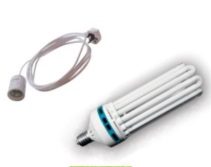 CFL Lighting Kits
