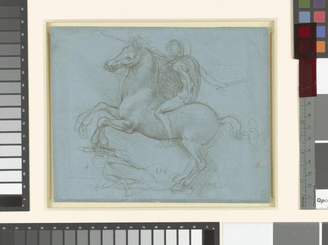 Leonardo da Vinci A Life in Drawing