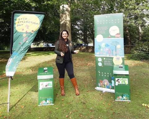 Collect Tree Seeds for Leeds