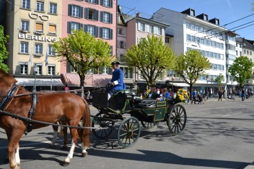 traditional swiss horse and cart