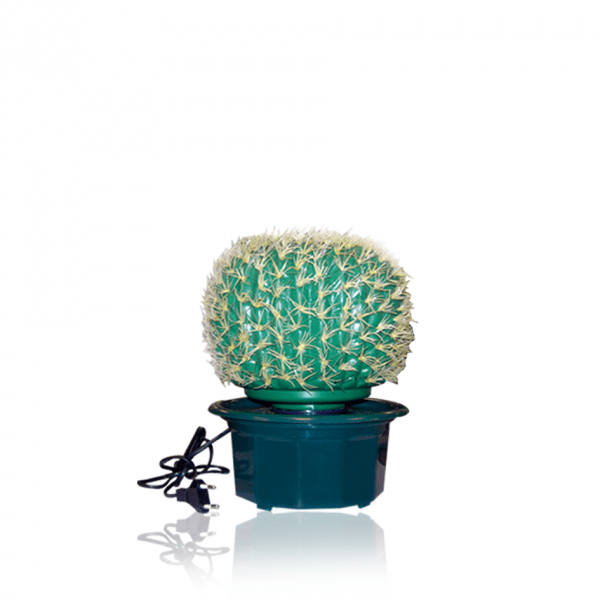 Decorative Cactus Lamp