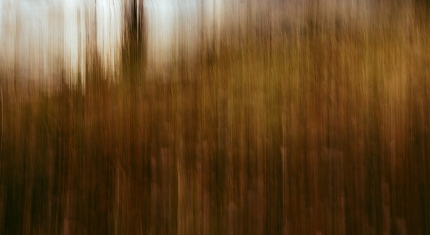 abstract fine art photography copper neutral tone moody