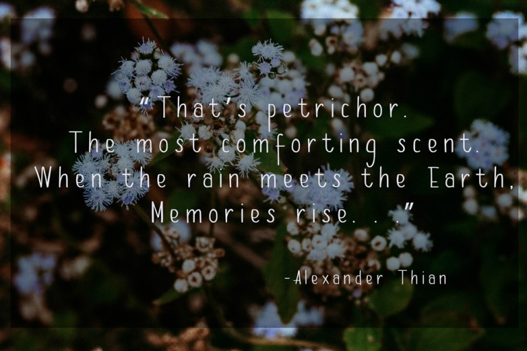 flower nature quote petrichor flower art photography