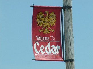 Welcome to Cedar by Andrew McFarlane