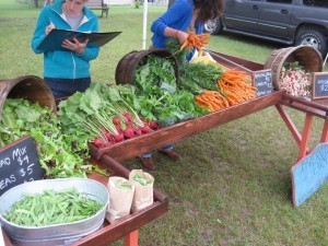 Leelanau Farmers Market Kick-Off Meeting and Potluck