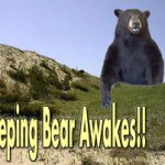Sleeping Bear Awakes!