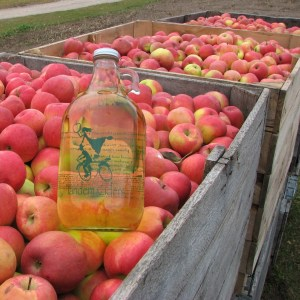 Leelanau County Tops State in Wine & Cider Production