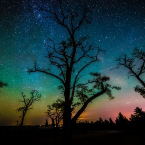 Starry Aurora Sky by Owen Weber