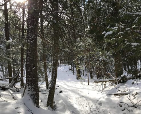 Winter Trail Open House & Trailblazing at Leelanau State Park
