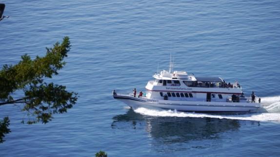 san juan safaris boat