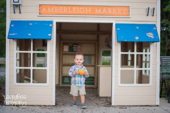 amberleigh park-9