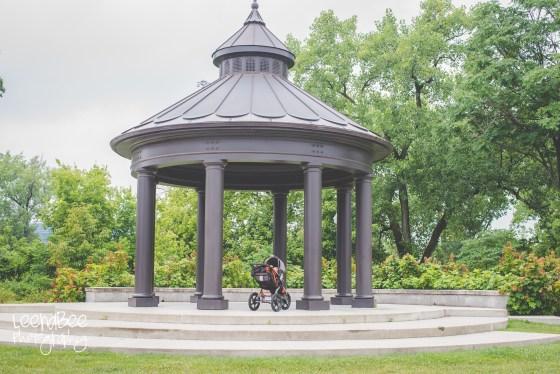 Harrison Park 2016-2