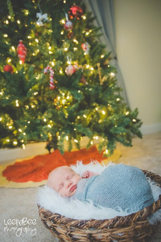 Meredith newborn-9