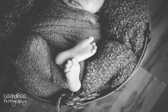 Bradley newborn-4