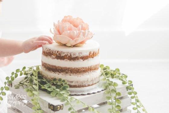 Boho First Birthday Cake Smash Dublin Ohio-18