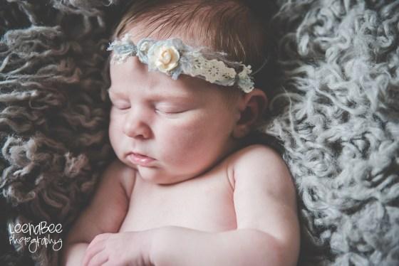 Fazzio newborn-6