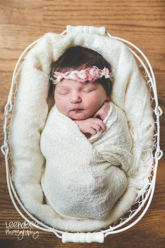 Dublin Newborn Photography-27