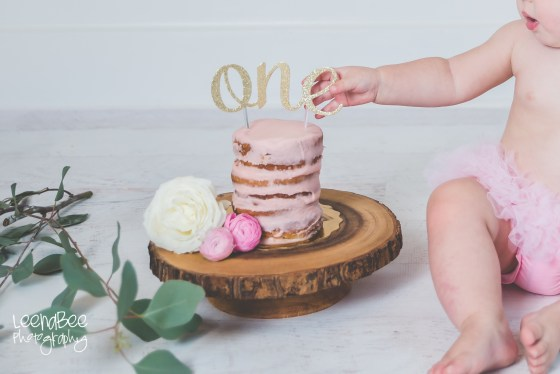 Dublin Ohio First Birthday Cake Smash-3