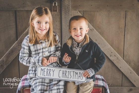 Holiday Photography Dublin Ohio-4