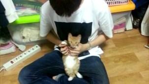 PRODUCE 101 _ Kang Daniel and his cats.mp4_000024157