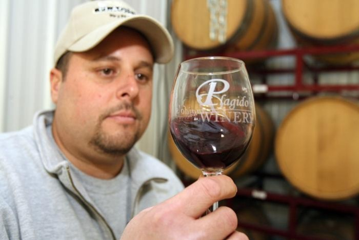 Photo of Ollie Tomasello, owner of Plagido's Winery in Hammonton. Photo by the fantastic Edward Lea.