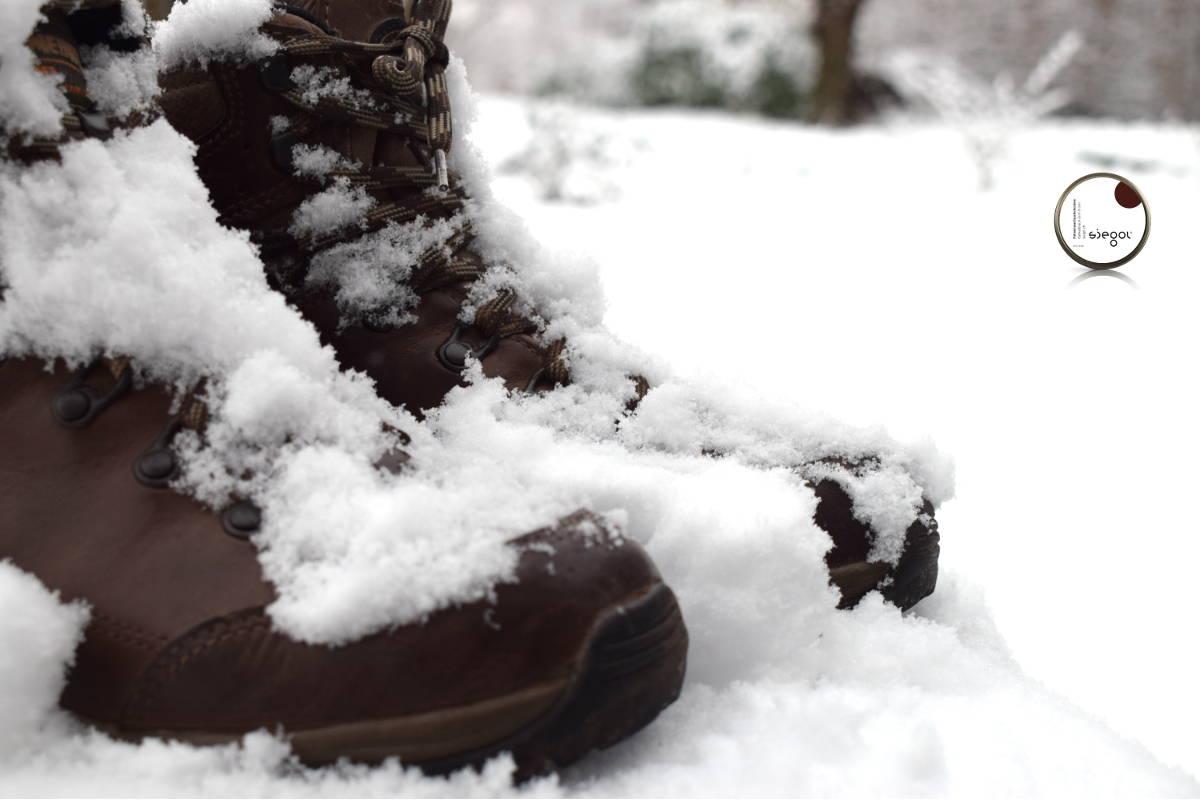 Siegol klaar voor de winter